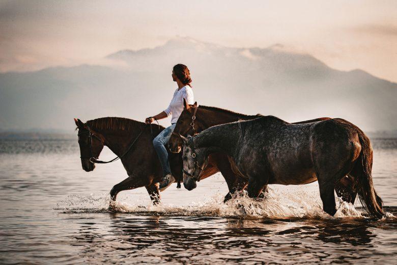 Happy Place - Catharina Falch mit 3 Pferden im Chiemsee