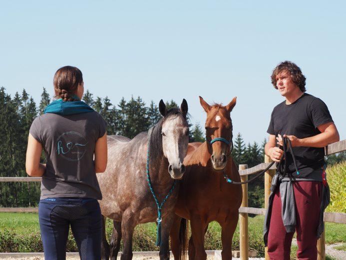 Coachingsituation mit 2 Pferden und Raphael Oliveira